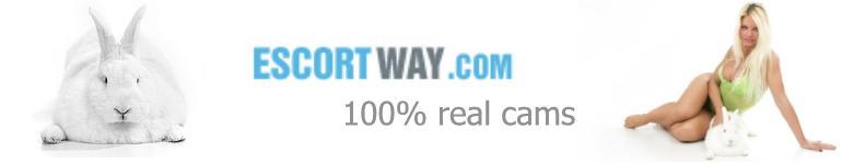 escortway.streamray.com