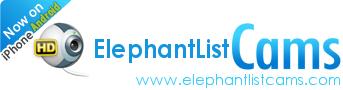 elephantlistcams.com