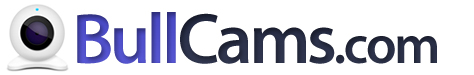 bullcams.com