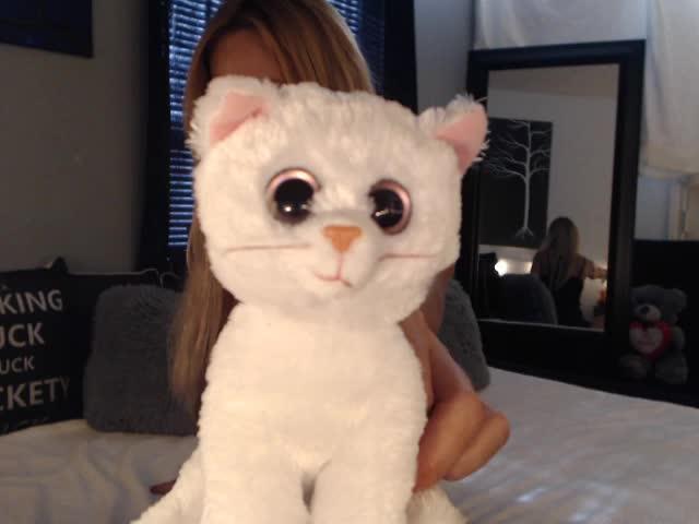 CatSmith webcam picture